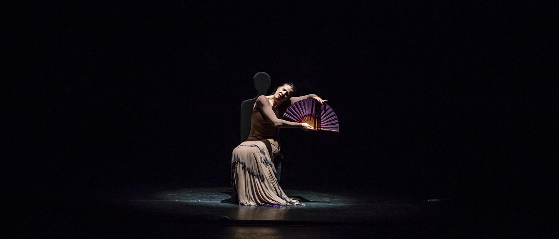 Yo, Carmen Flamenco Dance